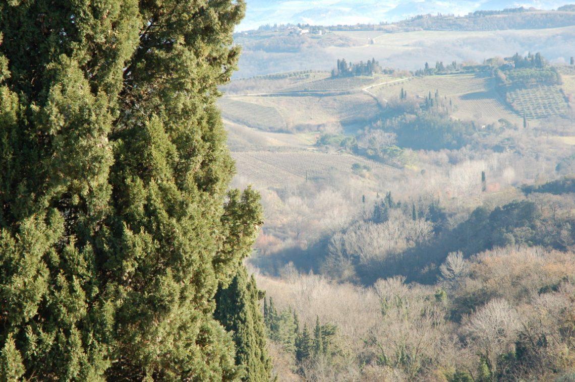 Itinerario a San Gimignano e dintorni